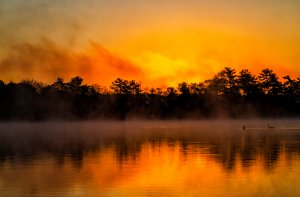 Hanson, MA Pond